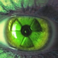 Аватар пользователя n-lozhkina