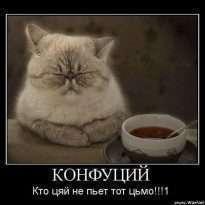 Аватар пользователя Katerina
