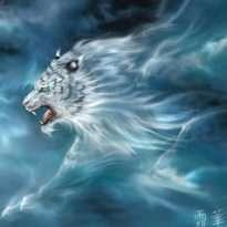 Аватар пользователя Tiger